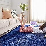 PAGISOFE Fluffy Shag Area Rugs for Bedroom,Soft