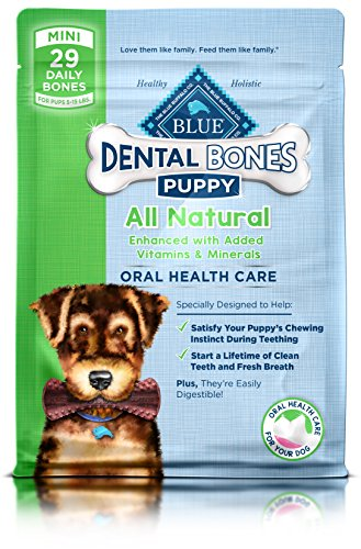 Blue Bones Puppy Mini Dental Chew Dog Treat 12-Oz Discontinued