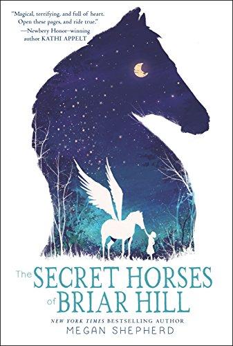 (The Secret Horses of Briar Hill)
