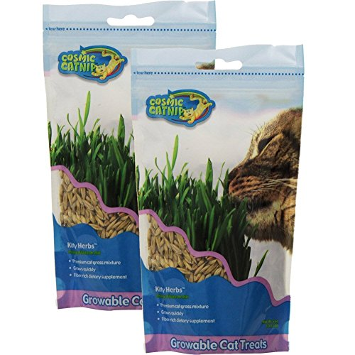 (2 Pack) Pet Zone OurPets Kitty Herbs, 5 Ounces each from Pet Zone