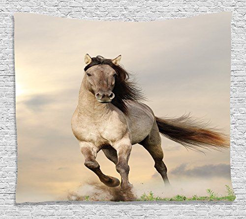 Ambesonne Animal Decor Collection, Wild Young Stallion Horse Running at Sunset Male Power Nake Muscular Physique Nobility Photo, Bedroom Living Room Dorm Wall Hanging Tapestry, 60W X 40L Inch, - Teen Girl Nake