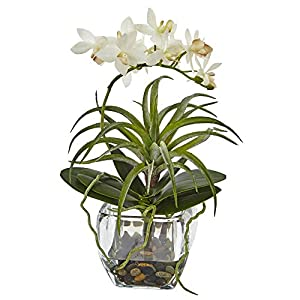 Nearly Natural 1443 Orchid and Succulent Mixed Arrangement with Glass Vase 56