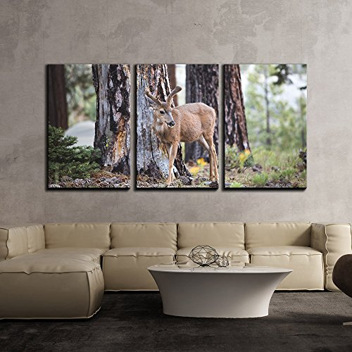 wall26 - 3 Piece Canvas Wall Art - Wild Animal of Deer in The Forest - Modern Home Decor Stretched and Framed Ready to Hang - 16