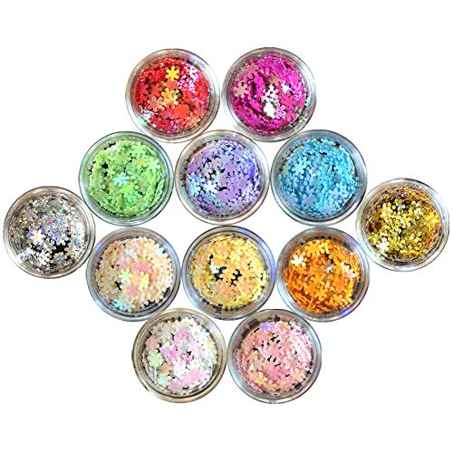 Nail Glitter 12 Boxes Nail Art Flakes Hexagon Confetti Festival Glitter Colorful Chunky Glitters for Hair Face and Eye Make Up Foil Flakes (12Colors,Snowflake) -
