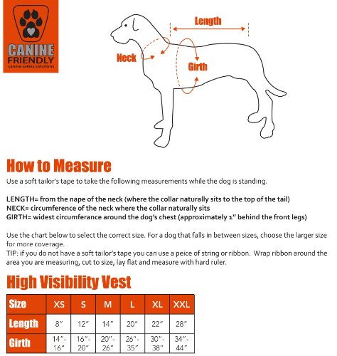 CANINE FRIENDLY High Visibility Dog Vest, Small by Canine Friendly (Image #2)