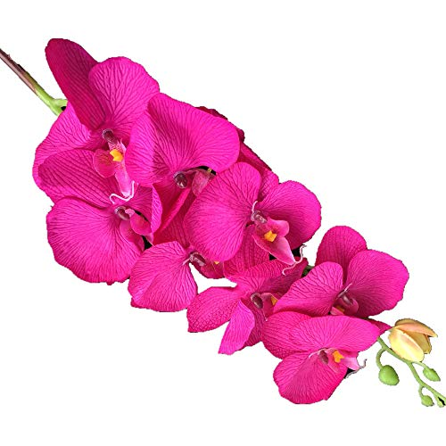 jiumengya 10pcs Artificial Phalaenopsis Butterfly Moth Orchid Fake Orchids Flower for Wedding Centerpieces Decorative Artificial Flowers (Fuchsia)