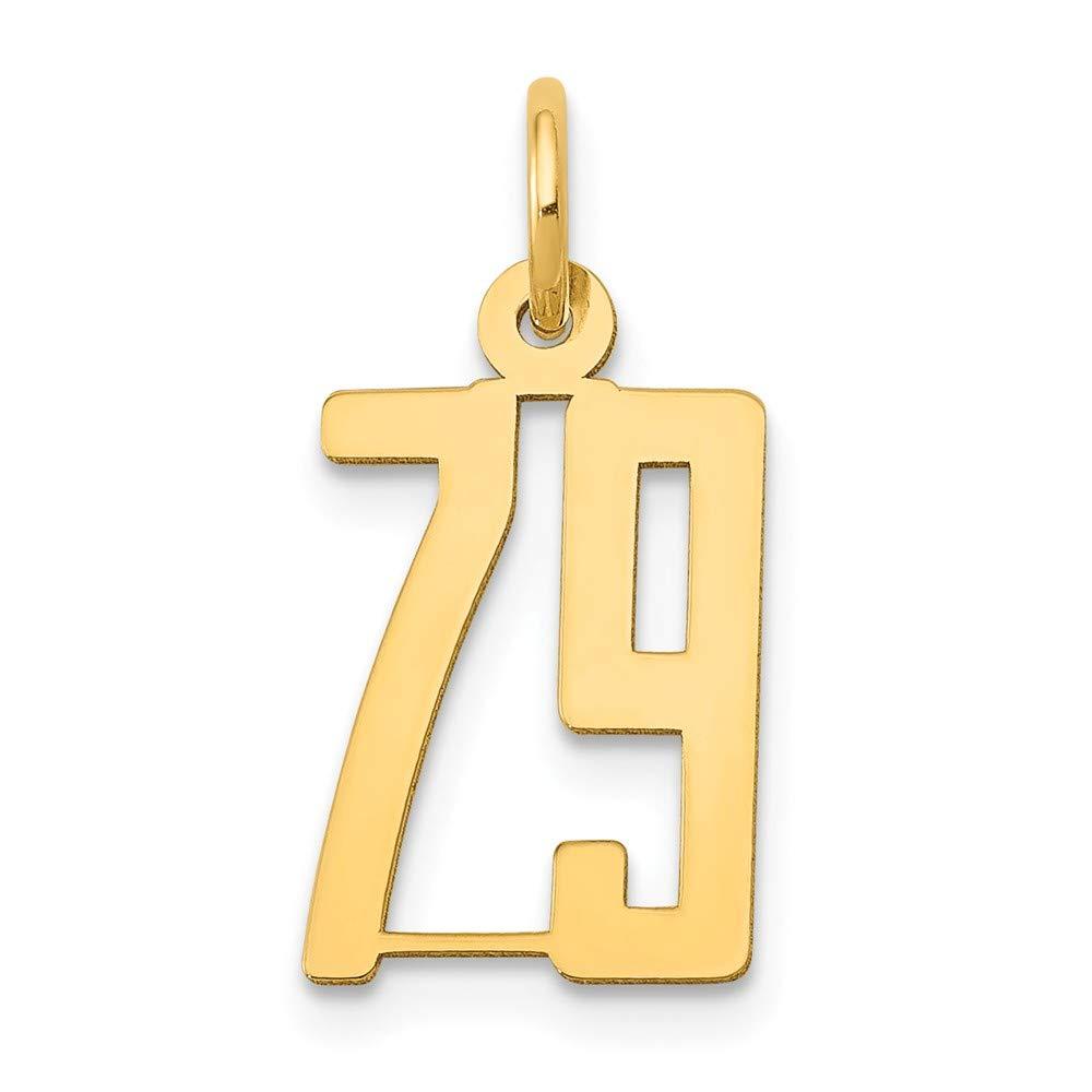 14K Yellow Gold Small Polished Elongated 79 Charm
