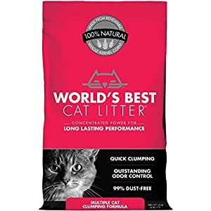 Amazon.com: World s Best Cat Litter múltiples Cat ...