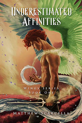 Underestimated Affinities: Cover Option 2 (Wings Series Book 1) by [Scarcella, Matthew]
