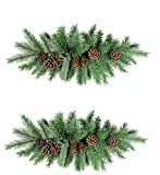 GSC PAIR! 30'' Christmas/Winter Holiday Pine & Mixed Pinecone Door Swags