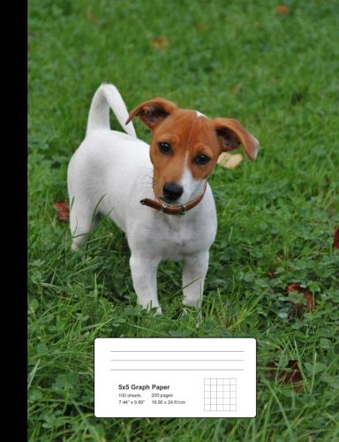Jack Russell Terrier Puppy 5 x 5 Graph Ruled Composition Book: Notebook 200 pages, 100 (Terrier Mix Puppy)