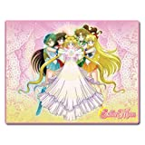 Great Eastern Entertainment Sailor Moon Princess Serenity & Sailor Guardians Sublimation Throw Blanket