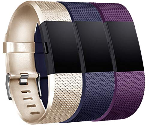 Tobfit Compatible for Fitbit Charge 2 Bands, Sport Replacement Bands Compatible for Fitbit Charge 2 Wristbands, Small/Large (b-Champagne Gold, Blue, Plum, Large) (Shiny Plum)