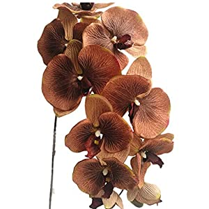 jiumengya 6pcs Coffee Color Moth Orchids Phalaenopsis Orchid Big Orchid Flower 10 Heads for Wedding Decorative Artificial Flowers (Coffee) 109