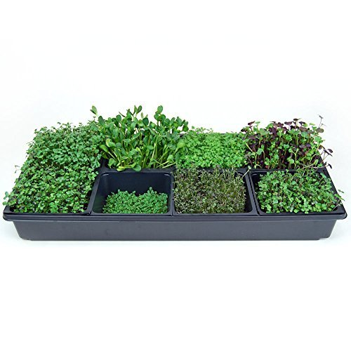 $59.99 Hydroponics Kits Hydroponic Sectional Microgreens Growing Kit – Grow Micro Greens & Herbs Indoor Gardening: All Supplies – Seeds, Trays, Instructions, Etc… 2019