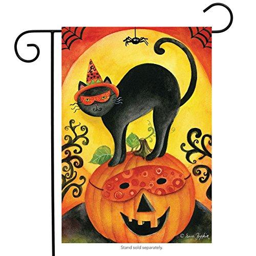 Briarwood Lane Black Cat Halloween Garden Flag Jack O'Lantern Primitive Spider 12.5