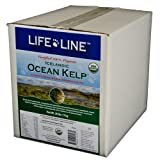 Life Line Organic Ocean Kelp Dog and Cat Supplement, 20-Pound, My Pet Supplies