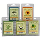 "EcoScents 100% All Natural Soy Wax Melts - ""Beach Pack"""