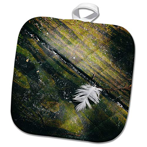 3dRose Susans Zoo Crew Scenery - Feather Old Wood Background - 8x8 Potholder (PHL_294130_1) by 3dRose (Image #2)