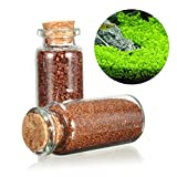 Plant Seed Aquarium Fish Tank Plants Prospects Grass Seed Grass Landscaping Decoration offers