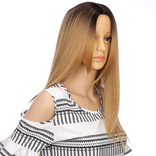 (Long Synthetic Wig Ombre Black to Blond Hair Wigs for Fashion Women and Girls New Arrive Cosplay Wig Blond Wig None Lace Frontal Closure Wig Rose Net Cool and Nice)