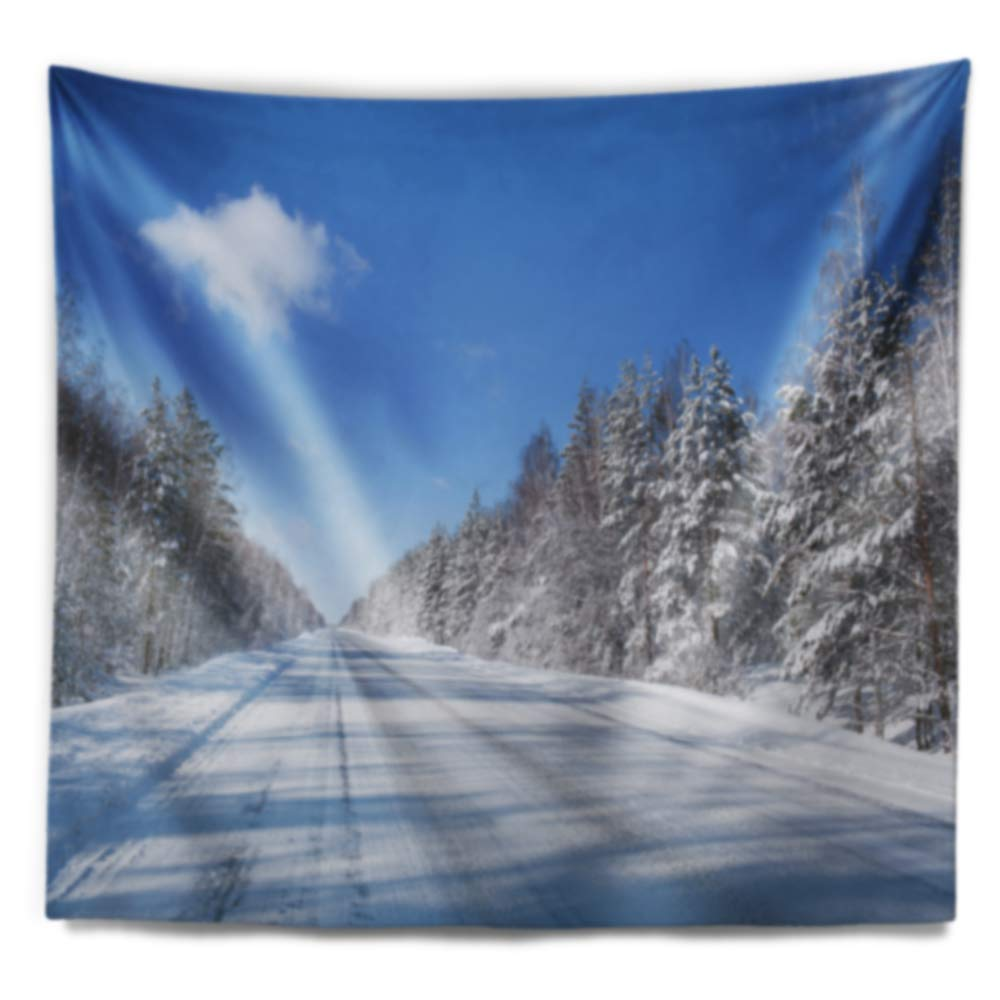 Created On Lightweight Polyester Fabric 80 in x 68 in Designart TAP9021-80-68  Winter Road Landscape Photography Blanket D/écor Art for Home and Office Wall Tapestry x Large