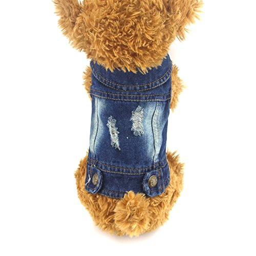 DOGGYZSTYLE Pet Vests Dog Denim Jacket Hoodies Puppy Jacket for Small Medium Dogs (XS, Blue)