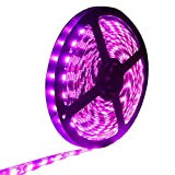 EverBright Super Brightness Pink 5M 5050 SMD 60LED/M 300 LED Waterproof Flexible Strip PCB Black For Car truck Neon Under car Lighting Kits Mall booth House decoration Stage music