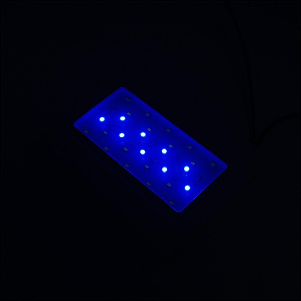 SunSun HKL-250 Nano Aquarium mit Beleuchtung und Innenfilter: Amazon ...