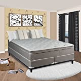 Spinal Solution 10'' Pillow/Euro Top Fully Assembled Orthopedic Mattress and Box Spring, King