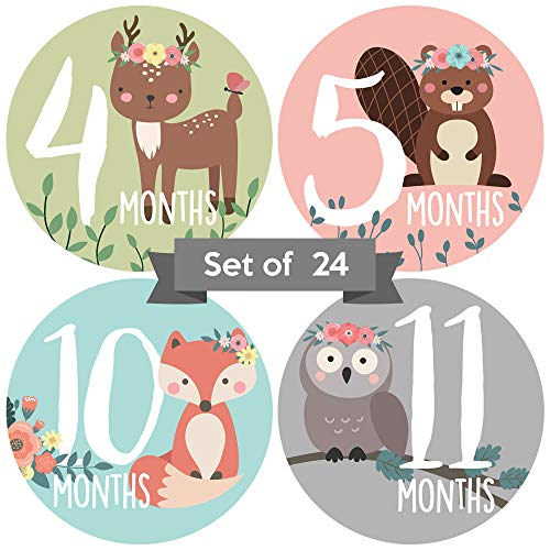 Baby Monthly Stickers | Woodland Animal Baby Milestone Stickers | Newborn Girl Stickers | Floral Month Stickers for Baby Girl | Baby Girl Stickers | Newborn Monthly Milestone Stickers | (Set of 24)