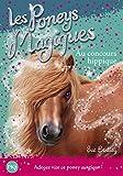14. Les poneys magiques: Au Concours Hippique (14)