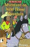 Adventure on Wild Horse Mountain (The Shoebox Kids)
