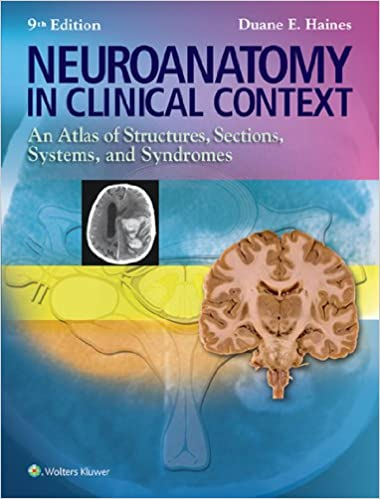\\FB2\\ Neuroanatomy In Clinical Context: An Atlas Of Structures, Sections, Systems, And Syndromes (Neuroanatomy: An Atlas Of Strutures, Sections, And Systems (). Flooring Adobe fully serie remember
