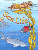 Sea Life Coloring Book, Deborah A. Coulombe, 1878244132