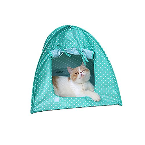 LPET Foldable Cat Tent Outdoor Travel Safety Pet Shelter Toy Storage Water Resistant Tent for Small House Animas (green)  sc 1 st  Amazon.com & Cat Tents for Outside: Amazon.com