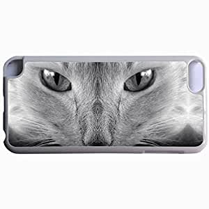 Customized Back Cover Case For iPod Touch 5 Hardshell Case, WHITE Back Cover Design Cat Personalized Unique Case For iPod Touch 5 hjbrhga1544