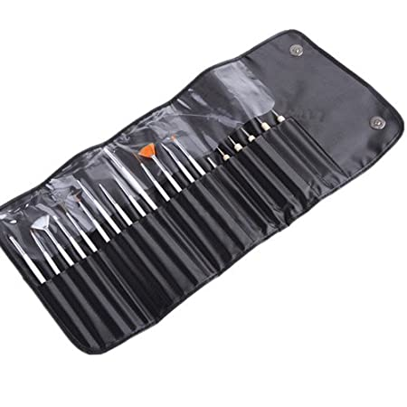 Beautylife Nail Art Design Painting Detailing Brushes & Dotting Pen Tool Kit Set -15 Brush + 5 Dotting Pen