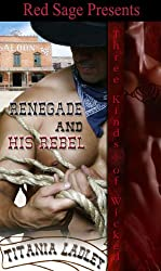 Renegade & His Rebel ~ Three Kinds of Wicked - Book 4