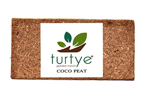Turtye Coco Peat Brick 650 Grams - Gardening Fiber - Expands Upto...