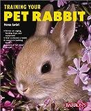 Training Your Pet Rabbit