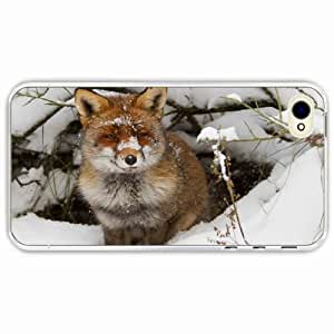 Zheng caseZheng caseiPhone 4/4s 4S Black Hardshell Case branches snow winter burrow Transparent Desin Images Protector Back Cover