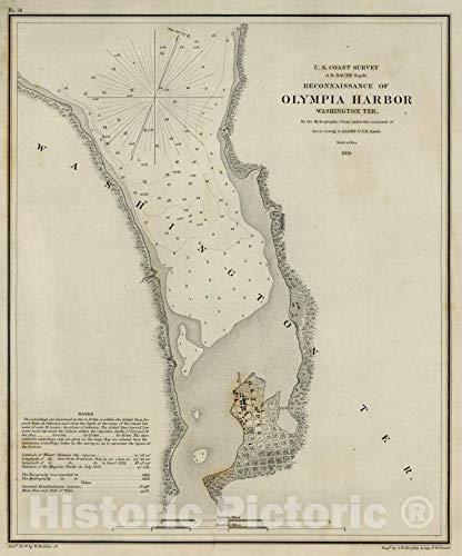 Historic Map   1856 Olympia Harbor, Washington Teritory   Vintage Wall Art   37in x 44in