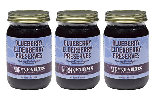 (Norm's Farms Blueberry Black Elderberry Preserves, 9 Ounce Jar, Pack of 3)