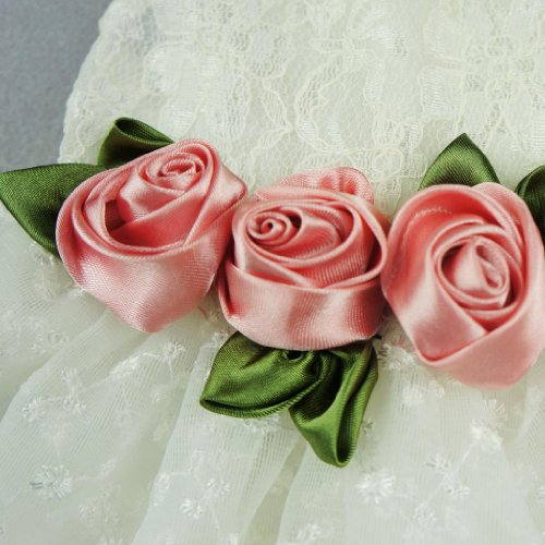 Image of Fitwarm Luxury Rose Lace Pet Dog Weddding Dress Bride Clothes Formal Apparel, XX-small