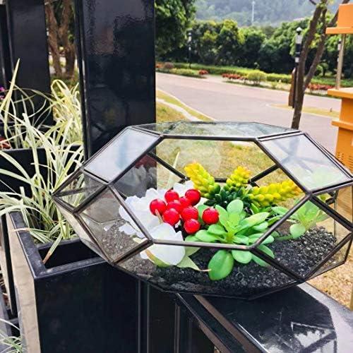11 Inch Large Geometric Glass Terrarium Handmade Irregular Planter Indoor Air Plants Holder Window Balcony Display Box Succulent Flower Pot DIY Centerpiece Wedding Card Box Big Rocket