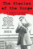 The Stories of the Surge, James Lofton, 1440145008