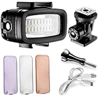 Neewer Waterproof Up to 131ft/40m Underwater 20 LED 700LM Flash Dimmable Fill Night Light with 3 Color Filter(White, Orange, Purple) for GoPro Hero 4 3+ Action Camera and All DSLR Cameras