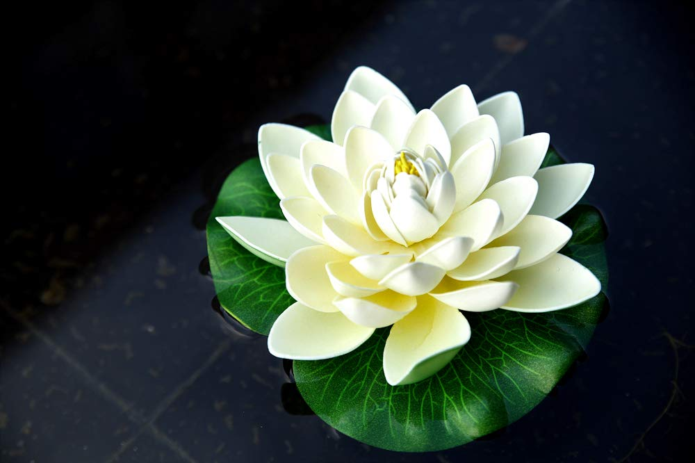 NAVADEAL-6PCS-Artificial-Floating-Foam-Lotus-Flowers-with-Water-Lily-Pad-Ornaments-Ivory-White-Perfect-for-Patio-Koi-Pond-Pool-Aquarium-Home-Garden-Wedding-Party-Christmas-Holiday-Decoration