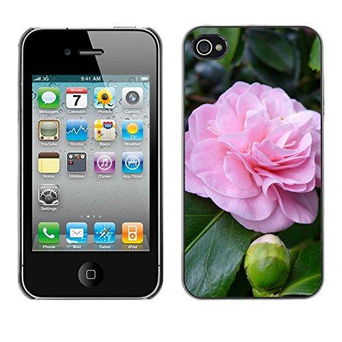 Premio Sottile Slim Cassa Custodia Case Cover Shell // F00024014 Camelia fleur // Apple iPhone 4 4S 4G